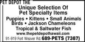 Pet Depot The
