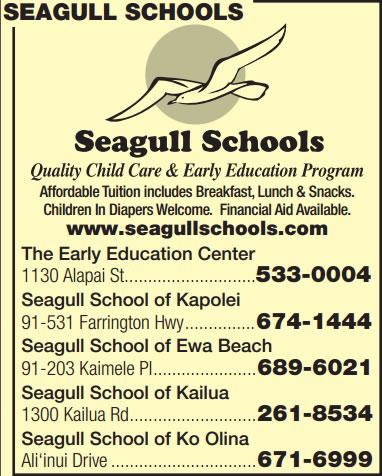 Seagull Schools
