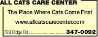 All Cats Care Center