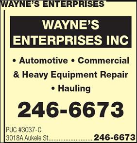 Wayne's Enterprises