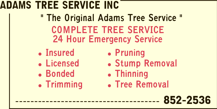 Adams Tree Service Inc