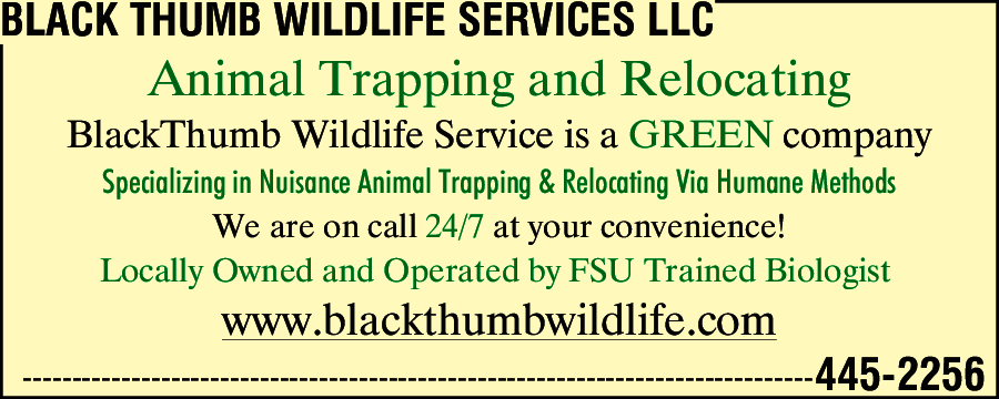 Black Thumb Wildlife Services LLC