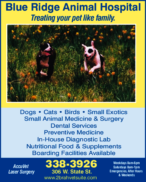 Blue Ridge Animal Hospital Inc