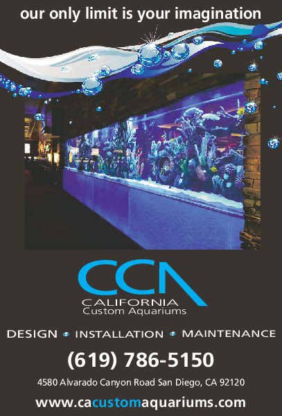 California Custom Aquariums