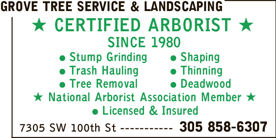 Grove Tree Service & Landscaping