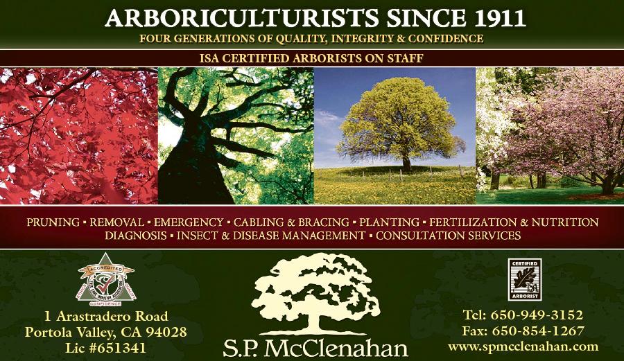 McClenahan S P Co. Tree Service