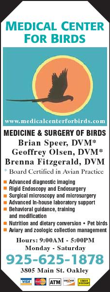 Medical Center For Birds