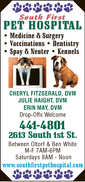 South First Pet Hospital