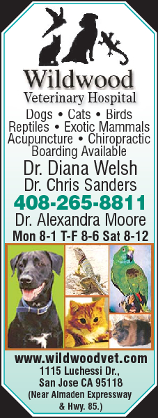 Wildwood Veterinary Hospital
