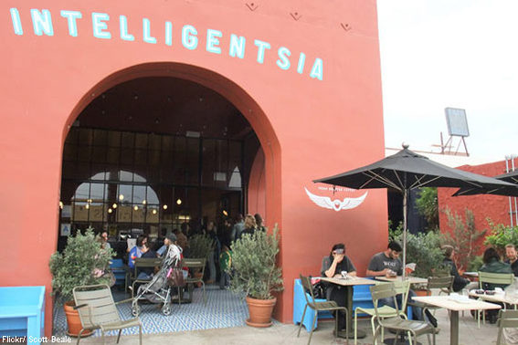 Intelligentsia, Various Locations
