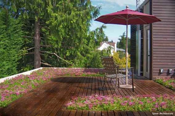 Landscape Design Trends - Lively Rooftop Gardens, Spore Architecture