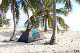 Primitive Camping on Dry Tortugas
