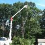 Salafia Tree Service - Middletown, CT