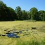 AQUA DOC Lake & Pond Management - Chardon, OH. Before