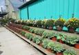 Cox's Plant Farm - Clayton, IN