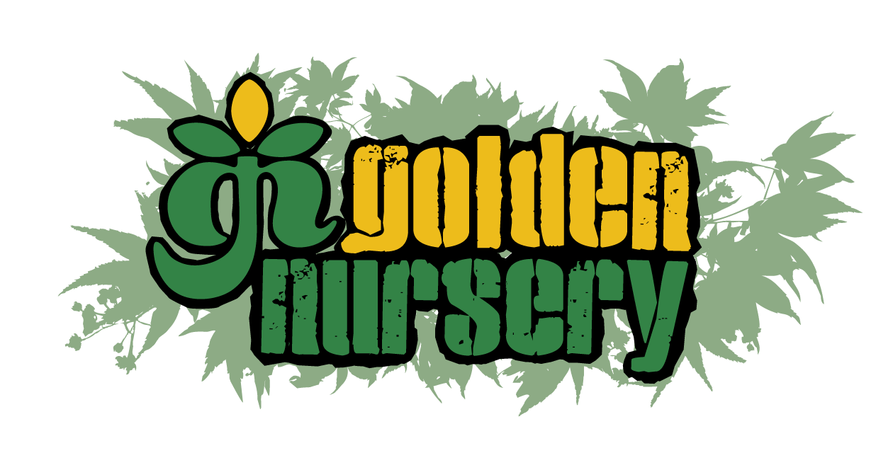 Golden Nursery Logo