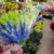 Pedals Flower Shop