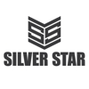 Silver Star Painting