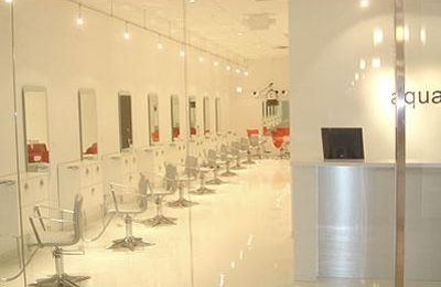 Aqua Salon - West Bloomfield, MI