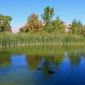 Floyd Lamb Park At Tule Springs - Las Vegas, NV