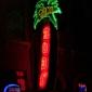 Tiki Bob's Cantina - Indianapolis, IN