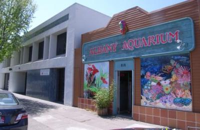 Albany Aquarium - Albany, CA