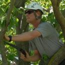 Hawthorne Brothers Tree Service, Inc.