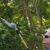 Tree Pro Tree Service
