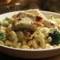 Olive Garden Italian Restaurant - Brandon, FL