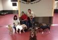 South Park Doggie Daycare - Los Angeles, CA