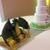 Suzybeez Cakes N Sweetz
