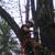 Arborist Masters Professional Tree Service