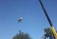 WTE Tree Services - Bradenton, FL