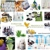 FOREVER LIVING PRODUCTS ALOE VERA ONLINE STORE
