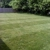 Pro Lawn and Landscapes