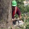 AlBee WorkerBee Business & Home Repair Co