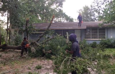 Advanced tree & landscape services inc - Jacksonville, FL