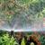 Davidson Irrigation