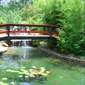 Lowes Water Garden - Spring, TX