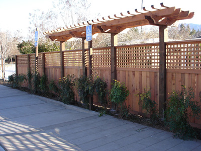 Wood Arbor with Fence