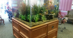 Aqualife Aquarium Systems - Edmond, OK