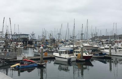 Pillar Point Harbor - Half Moon Bay, CA