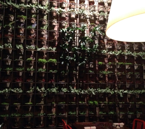Two Urban Licks - Atlanta, GA. A beautiful and unique wall full of plants in the private party room