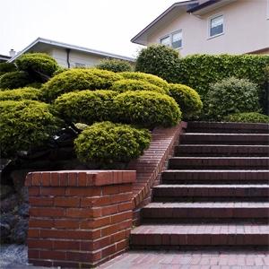 ad-steps-green.jpg