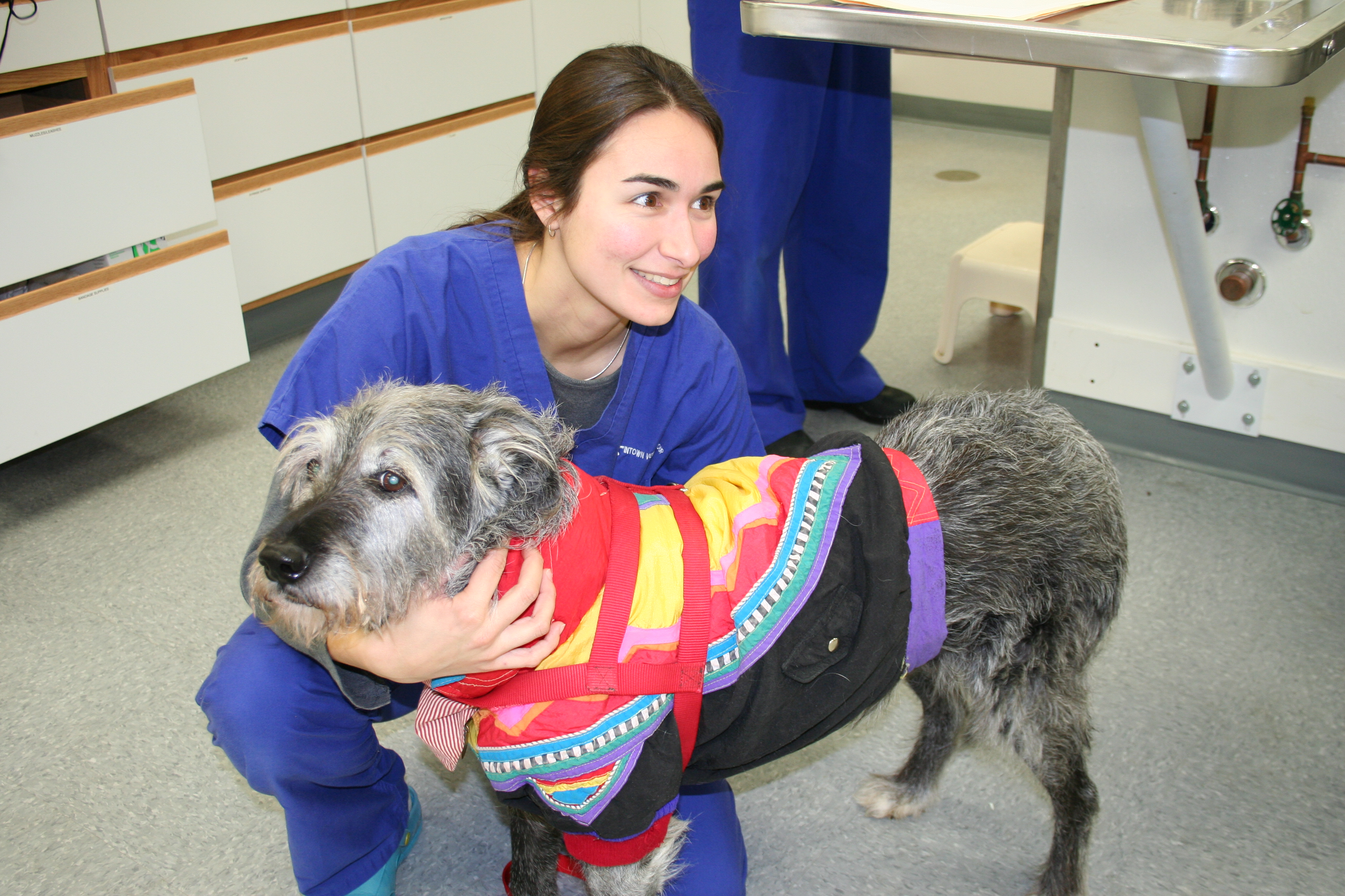 Massachusetts Veterinary Referral Hospital 20 Cabot Rd