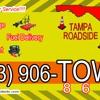 Tampa Roadside