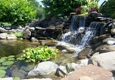 Pond Supplies of Ohio, Inc - Uniontown, OH
