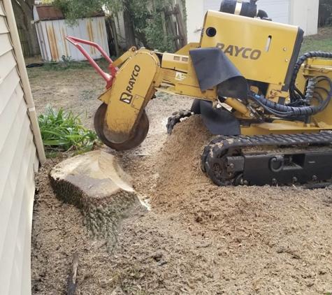 Adolfo Tree Service - Houston, TX. Rayco Stump Grinding in Houston Texas affordable service