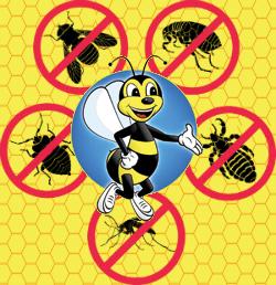 Home Exterminators in Aurora