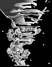 White Tornodo Logo